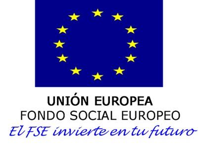 FSE invierte 2